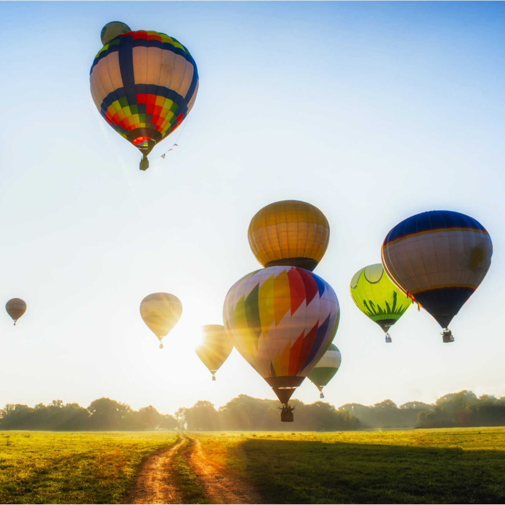 heritage-inn-international-balloon-festival.jpg