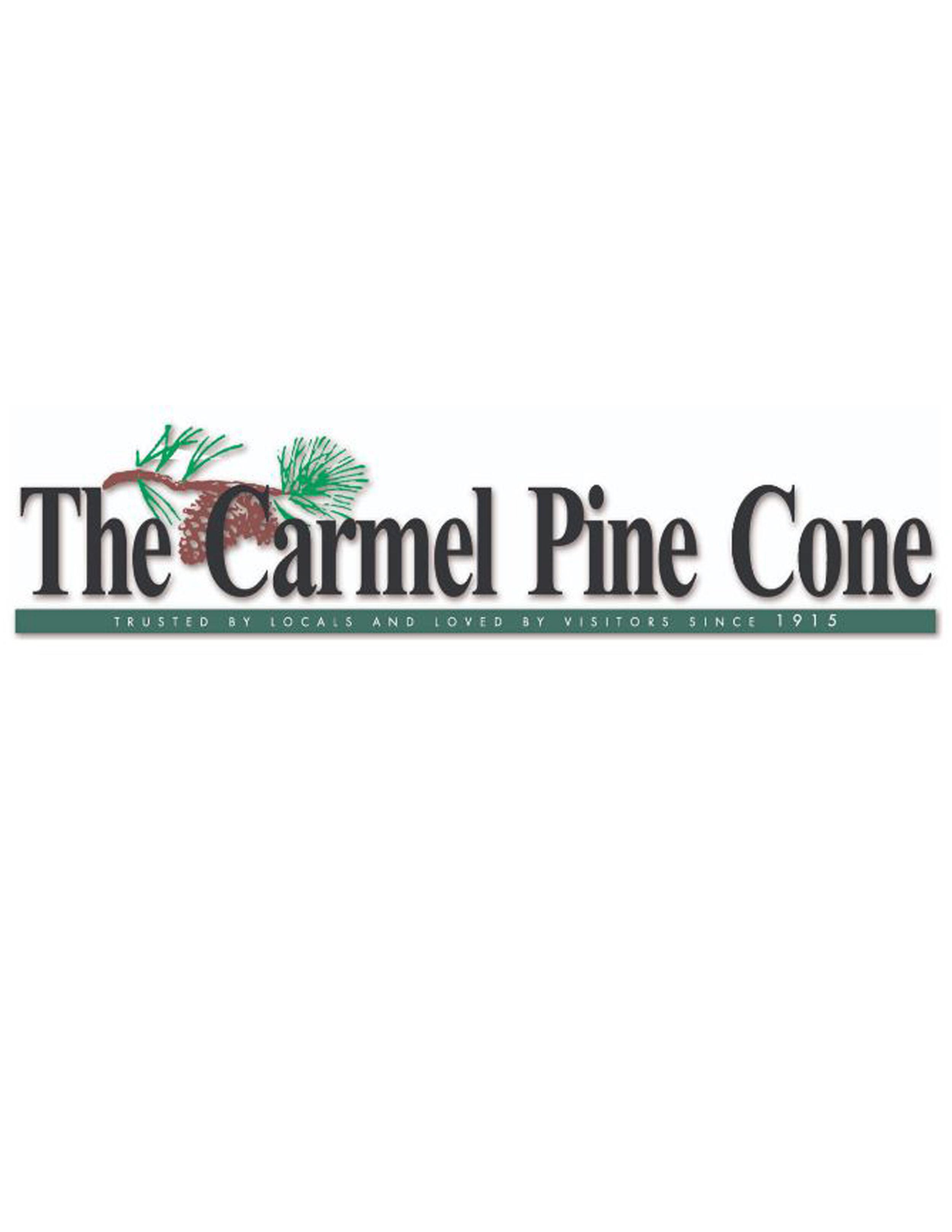 pinecone 2.jpg