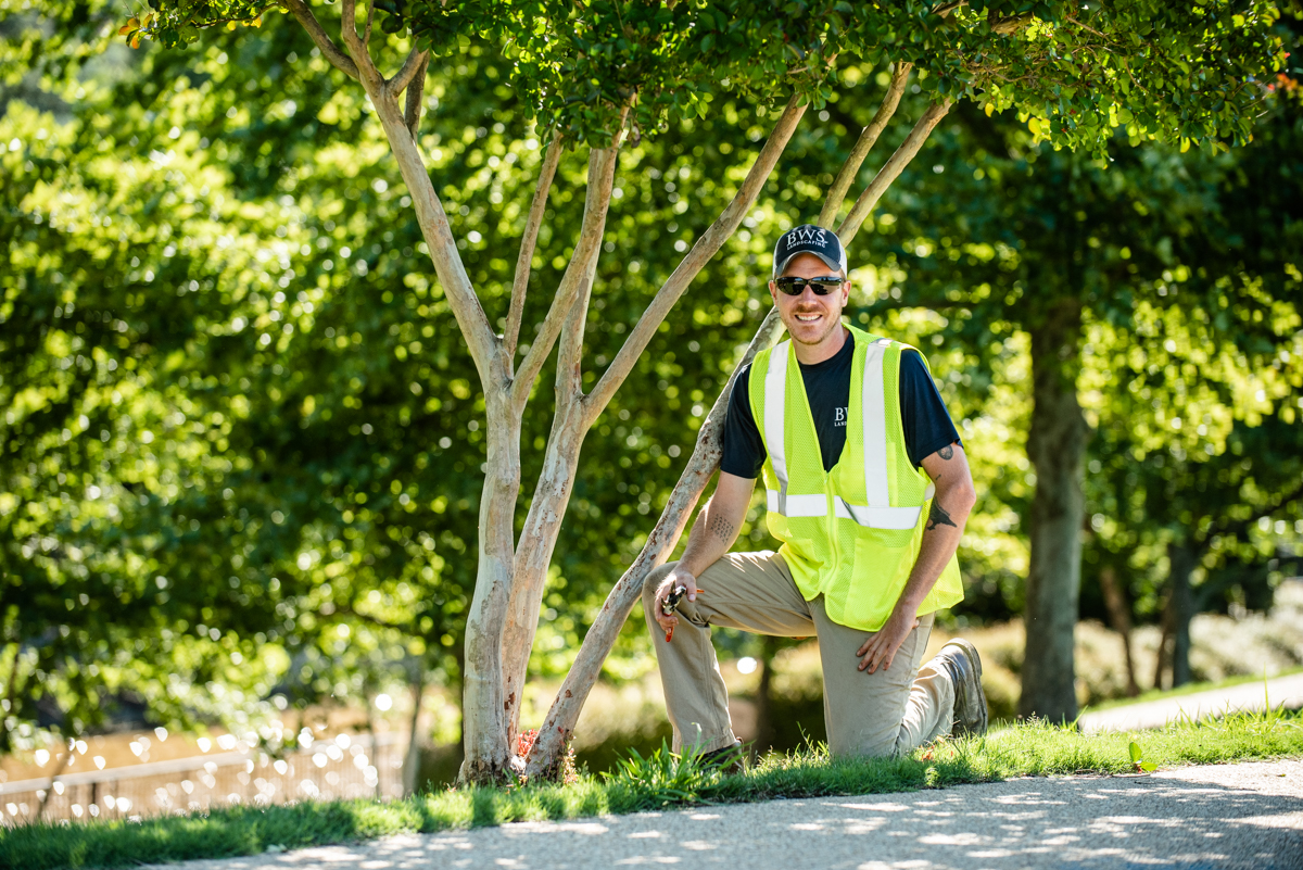 Join Our Team - If you are looking to work with a forward-thinking, drug-free landscaping company with a stellar reputation, BWS Landscaping is the place for you.