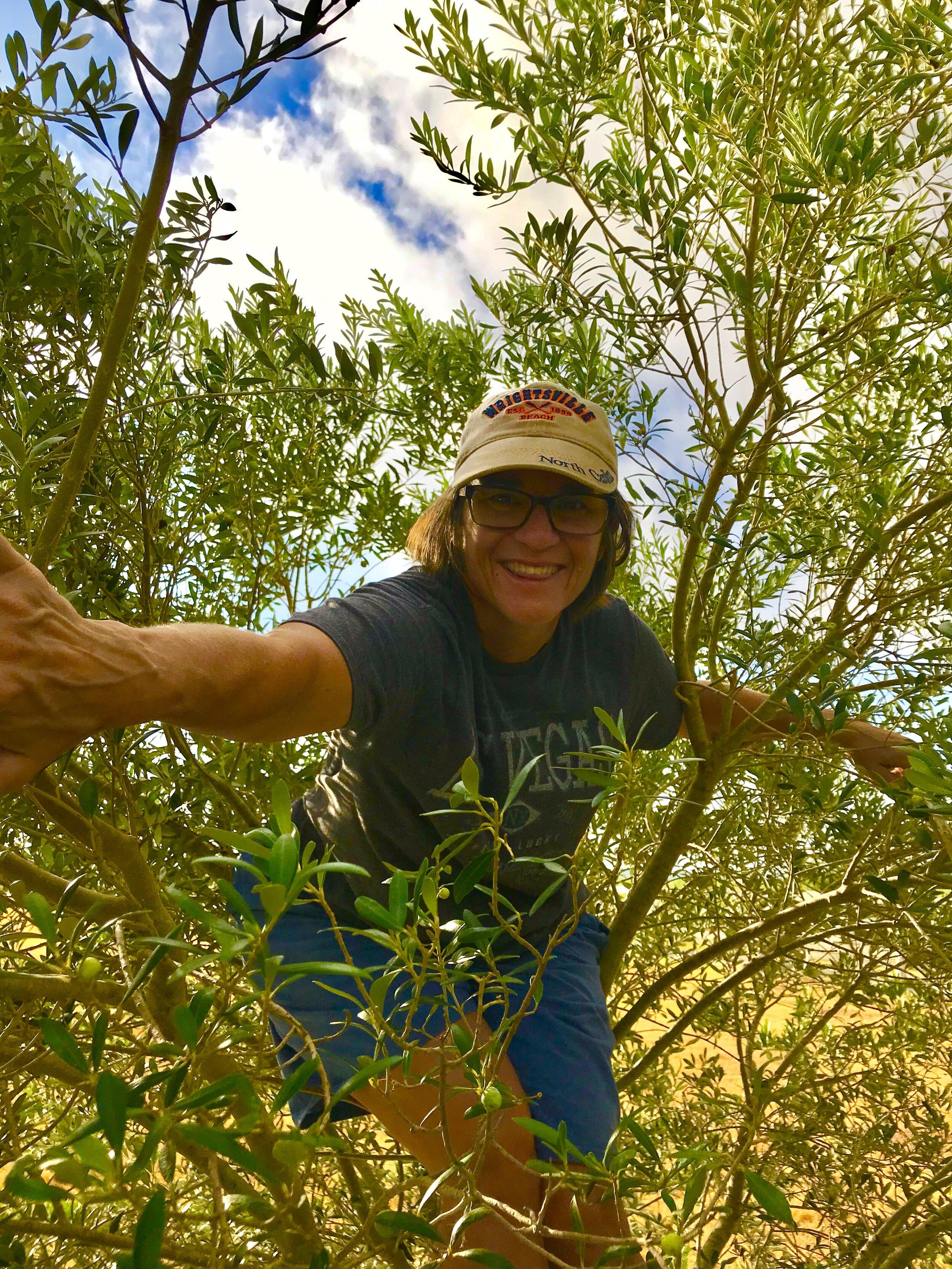 lisa in the trees.jpg