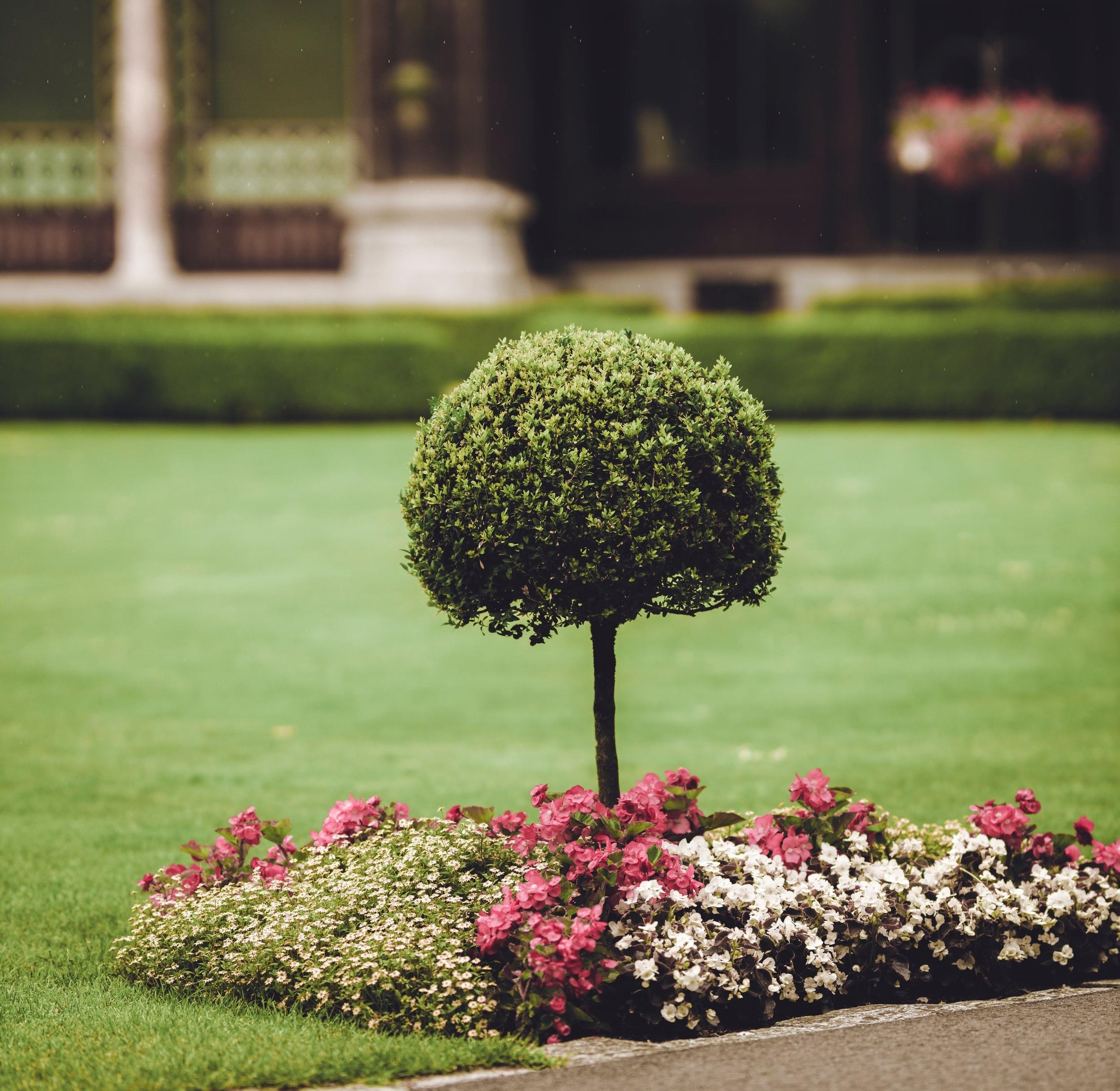 JNK+landscaping+final.jpg