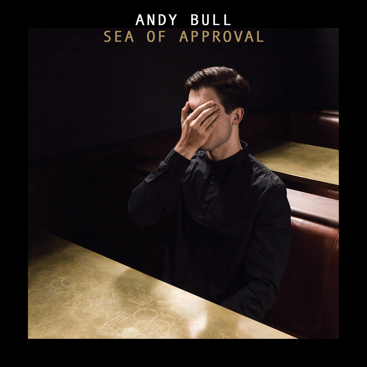 Andy Bull album cover