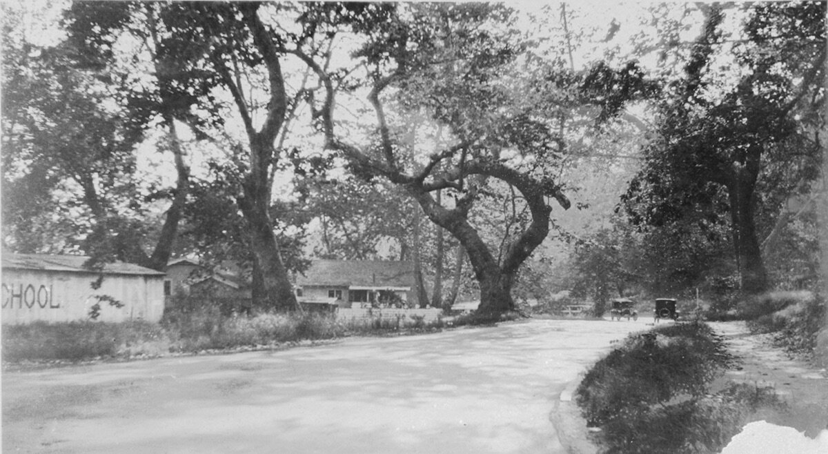 Oak lined street ca 1923, Entrada Road