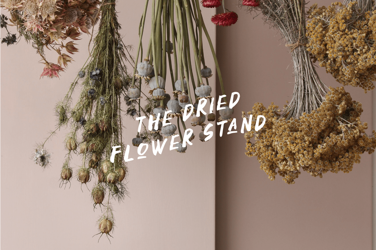 dried-flowers-somerset.png