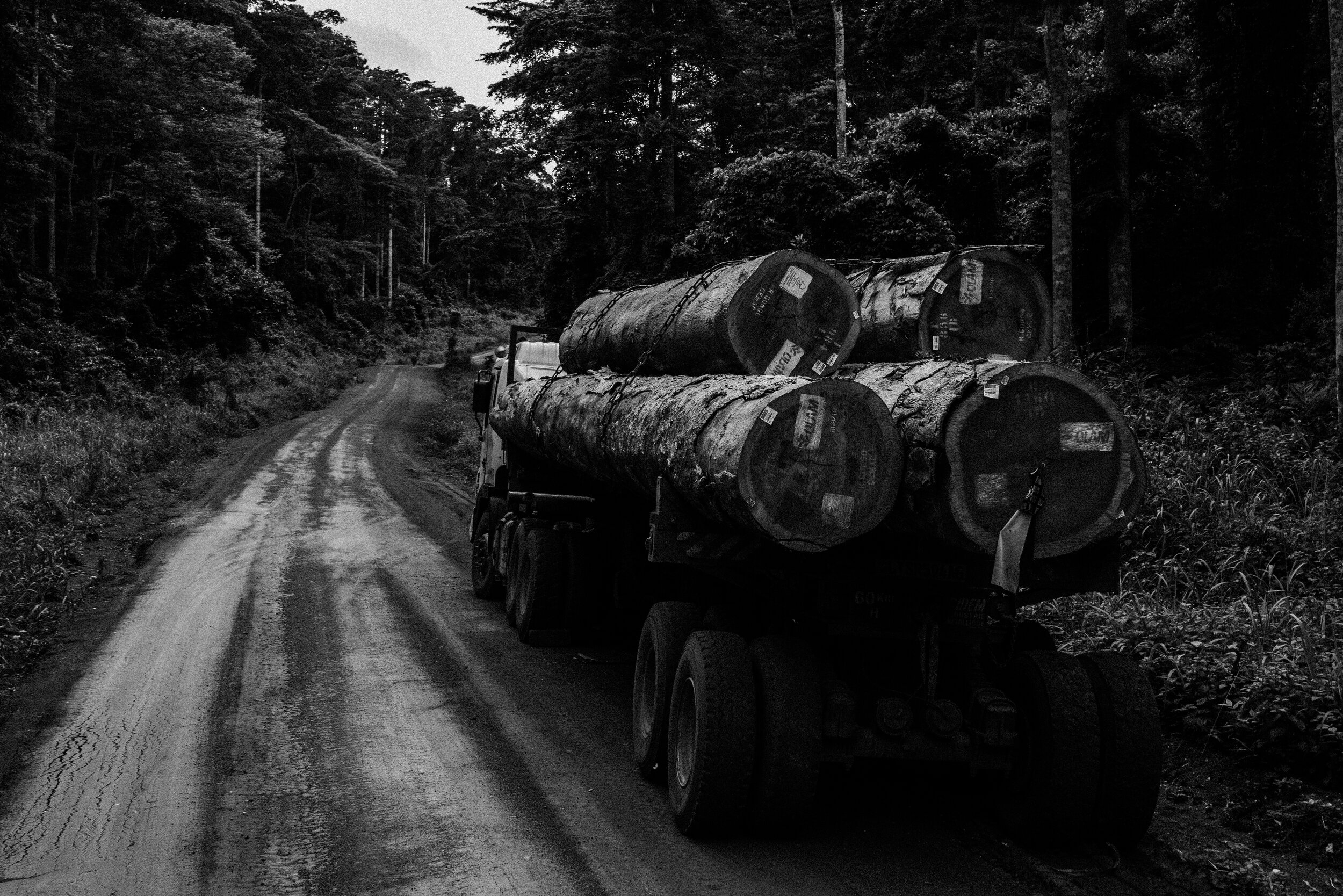 Logging truck with it's cargo heading back to the port of Douala , Cameroon -  Tito West 2016