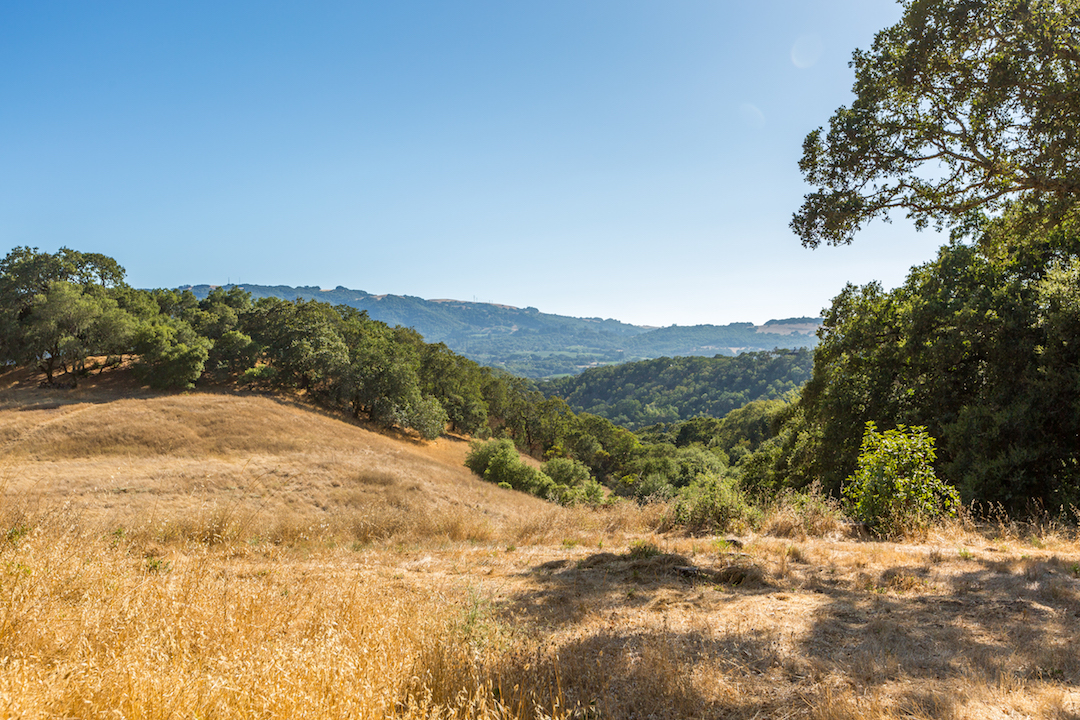 Sonoma County land for sale 10.jpg