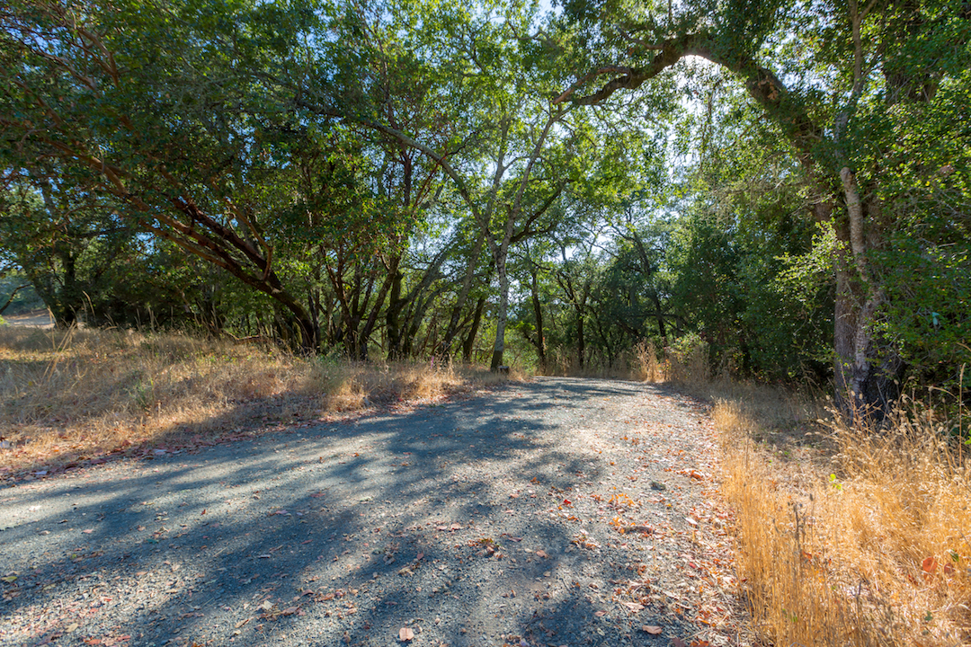 Sonoma County land for sale 13.jpg