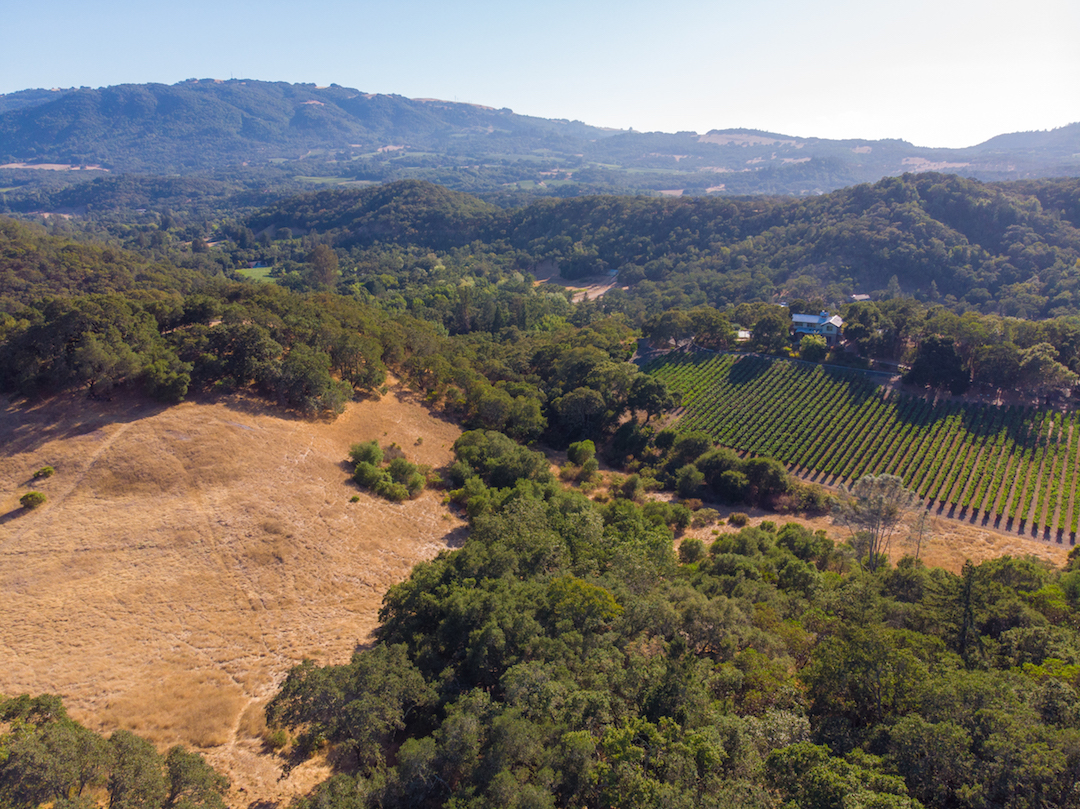 Sonoma County land for sale 17.jpg
