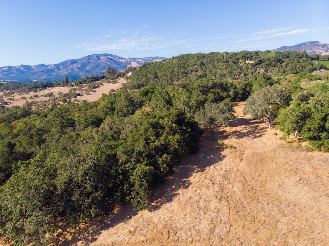 Sonoma County land for sale 18.jpg