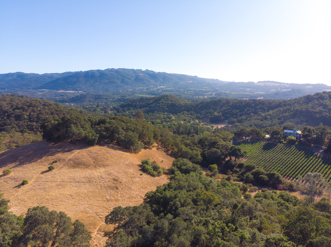 Sonoma County land for sale 15.jpg