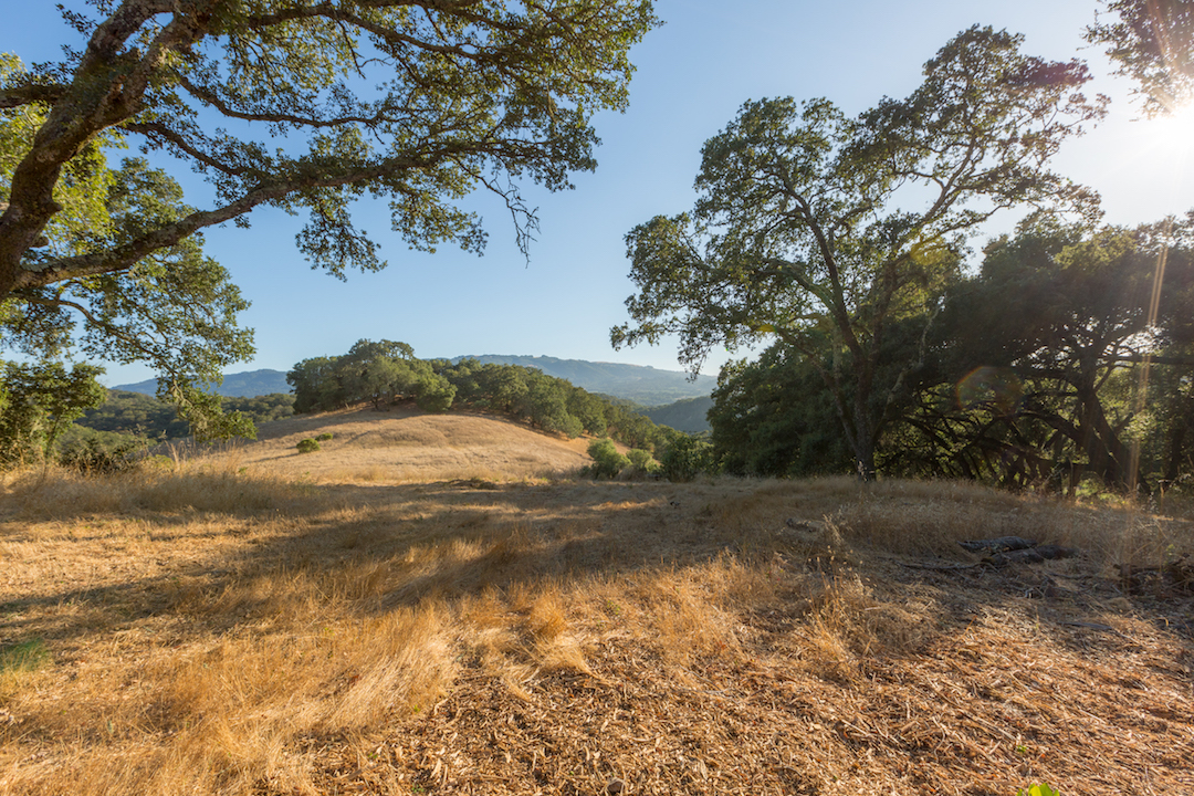 Sonoma County land for sale 21.jpg