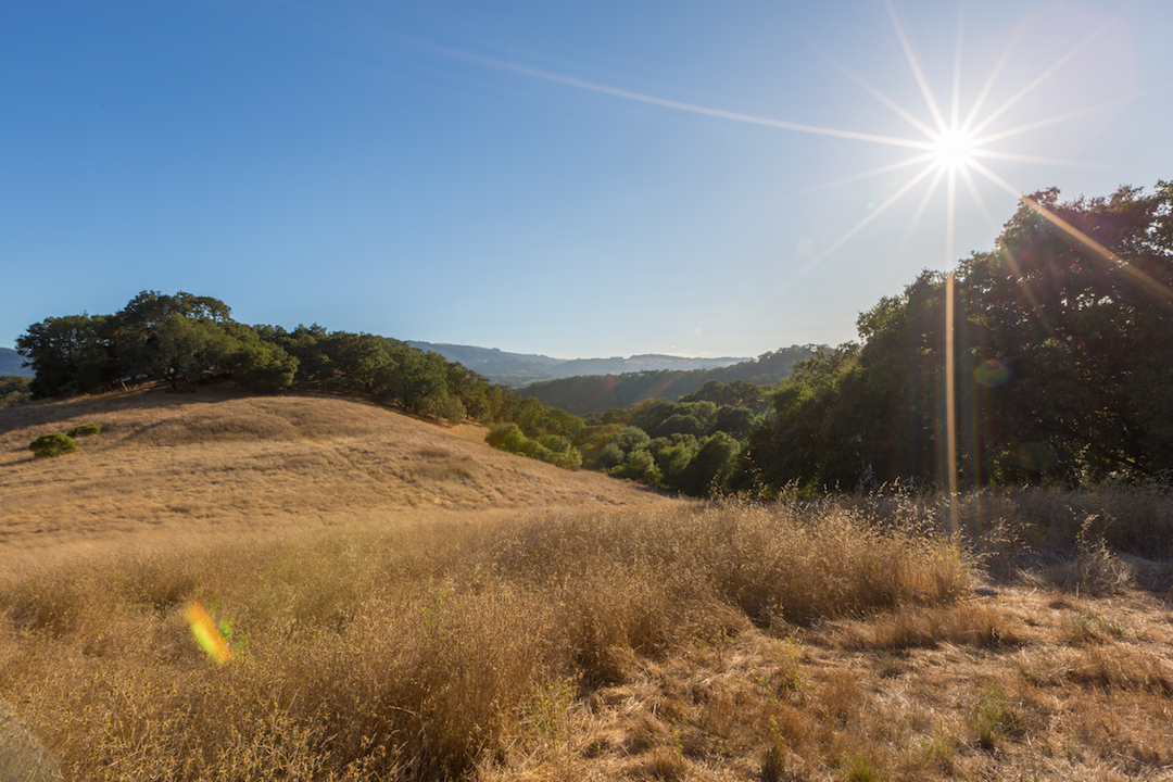 Sonoma County land for sale 22.jpg