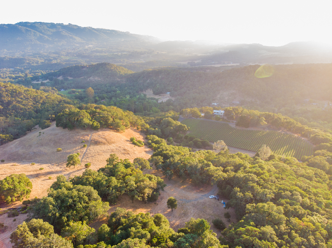 Sonoma County land for sale 30.jpg