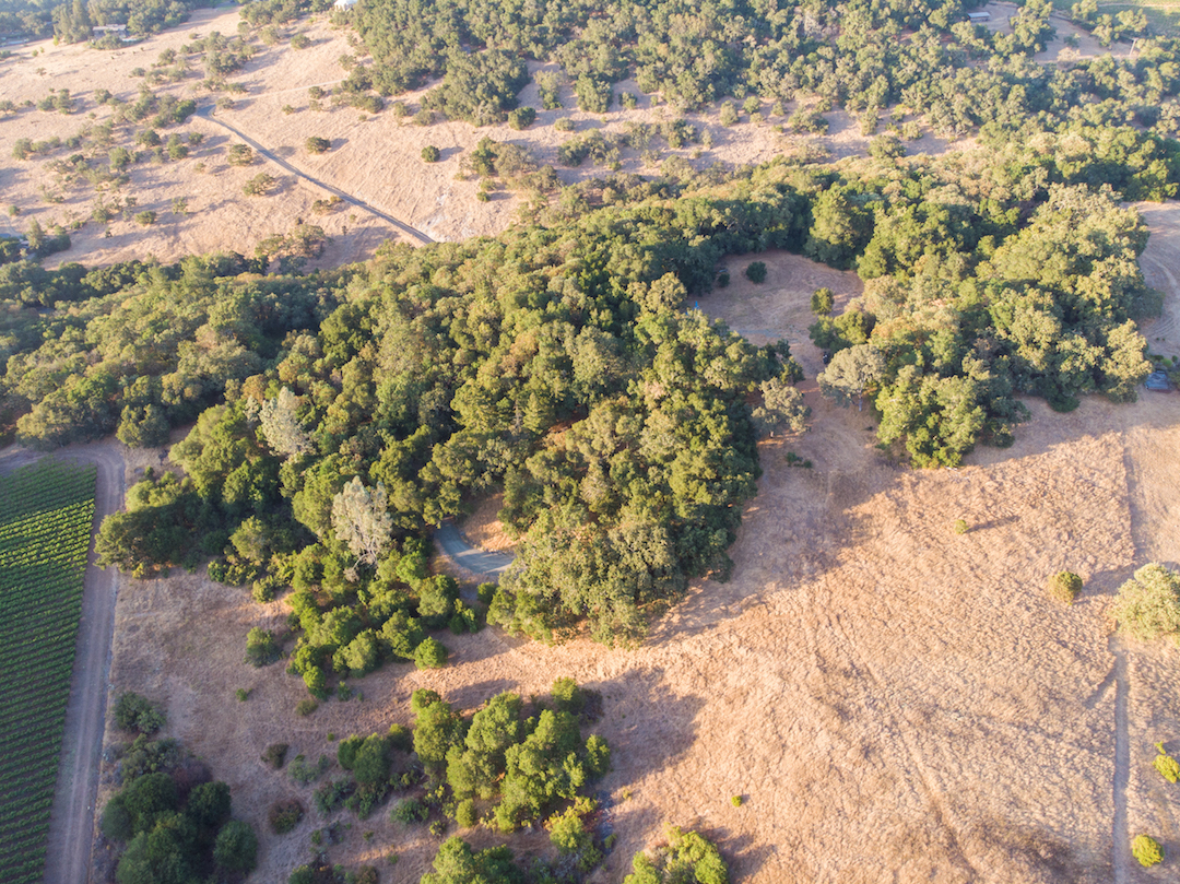 Sonoma County land for sale 32.jpg