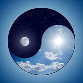 yin_yang side.jpg