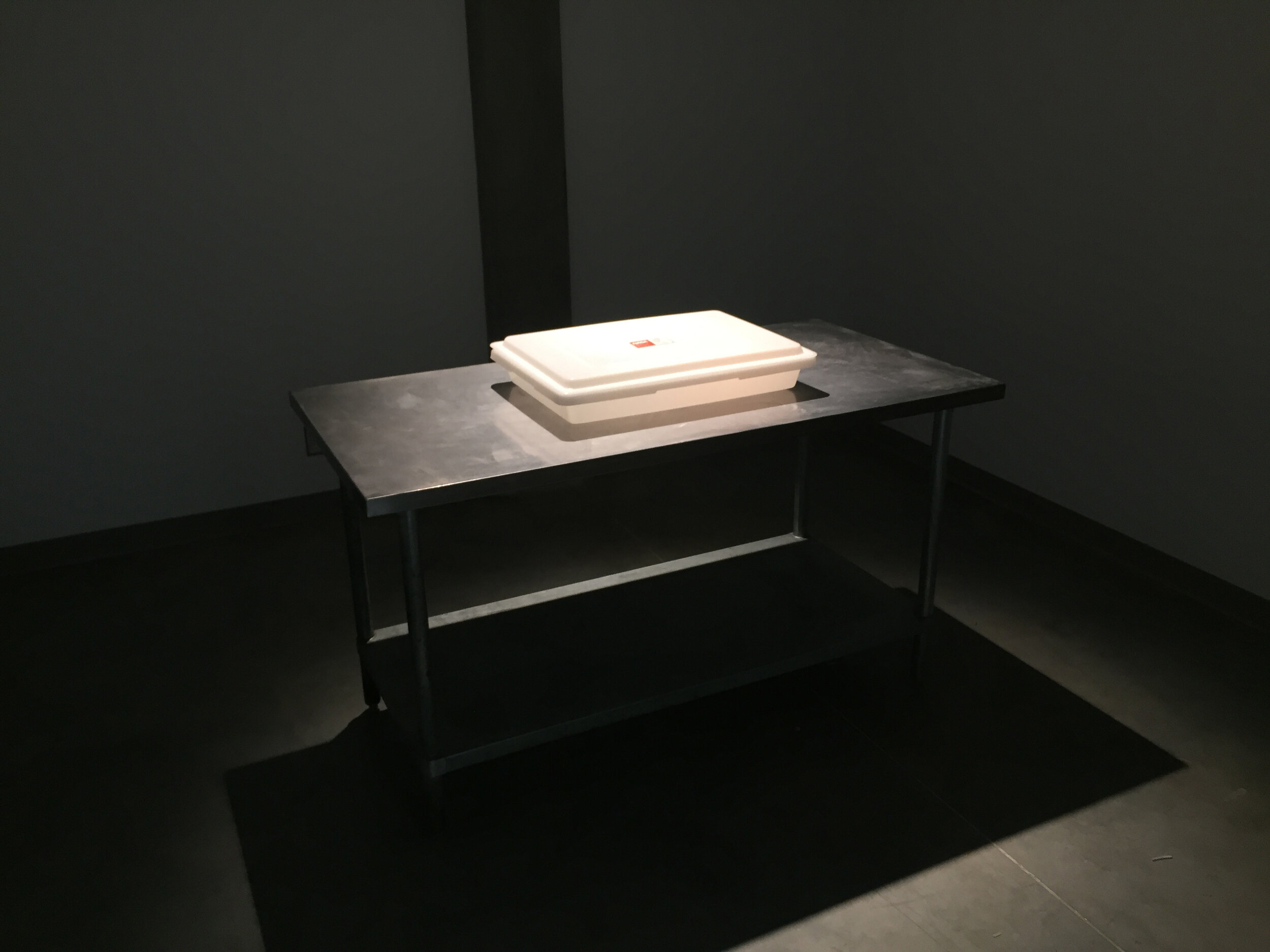 Michael Edward Miller  Critical Space Item , 2018, dyed slip cast fired clay powder, laser cut coloured plexiglass, plastic catering container, authentic NASA critical space item label, altered authentic NASA non-disclosure agreements, respiratory masks, hypoallergenic gloves, stainless steel tables, plastic quarantine sheets, actors, participants