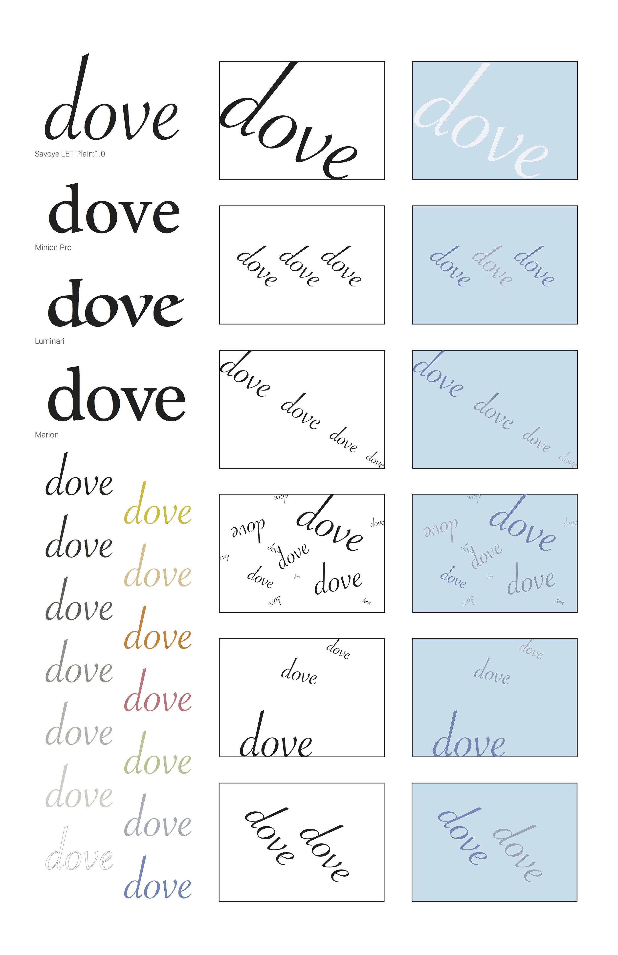Dove_Bird.jpg
