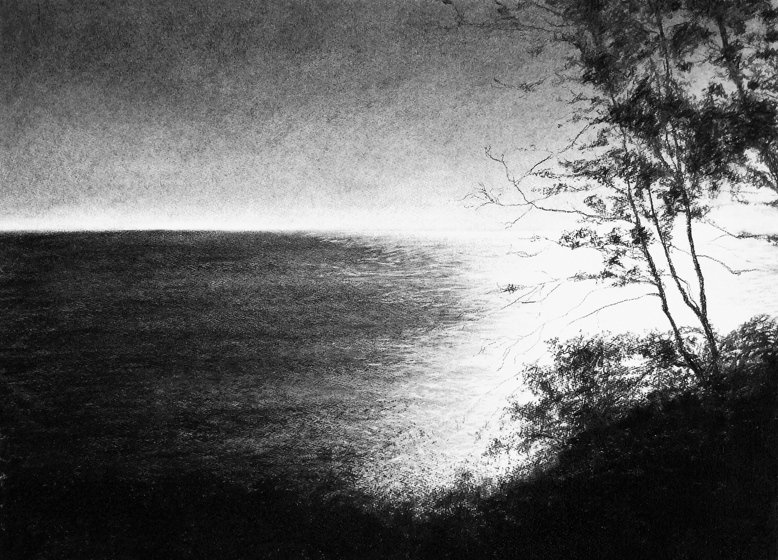 From a Dorset Cliff, charcoal  - SOLD