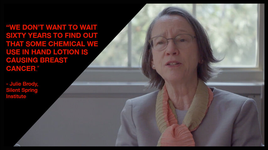 Dr. Julie Brody , Executive Director and Senior Scientist, Silent Spring Institute