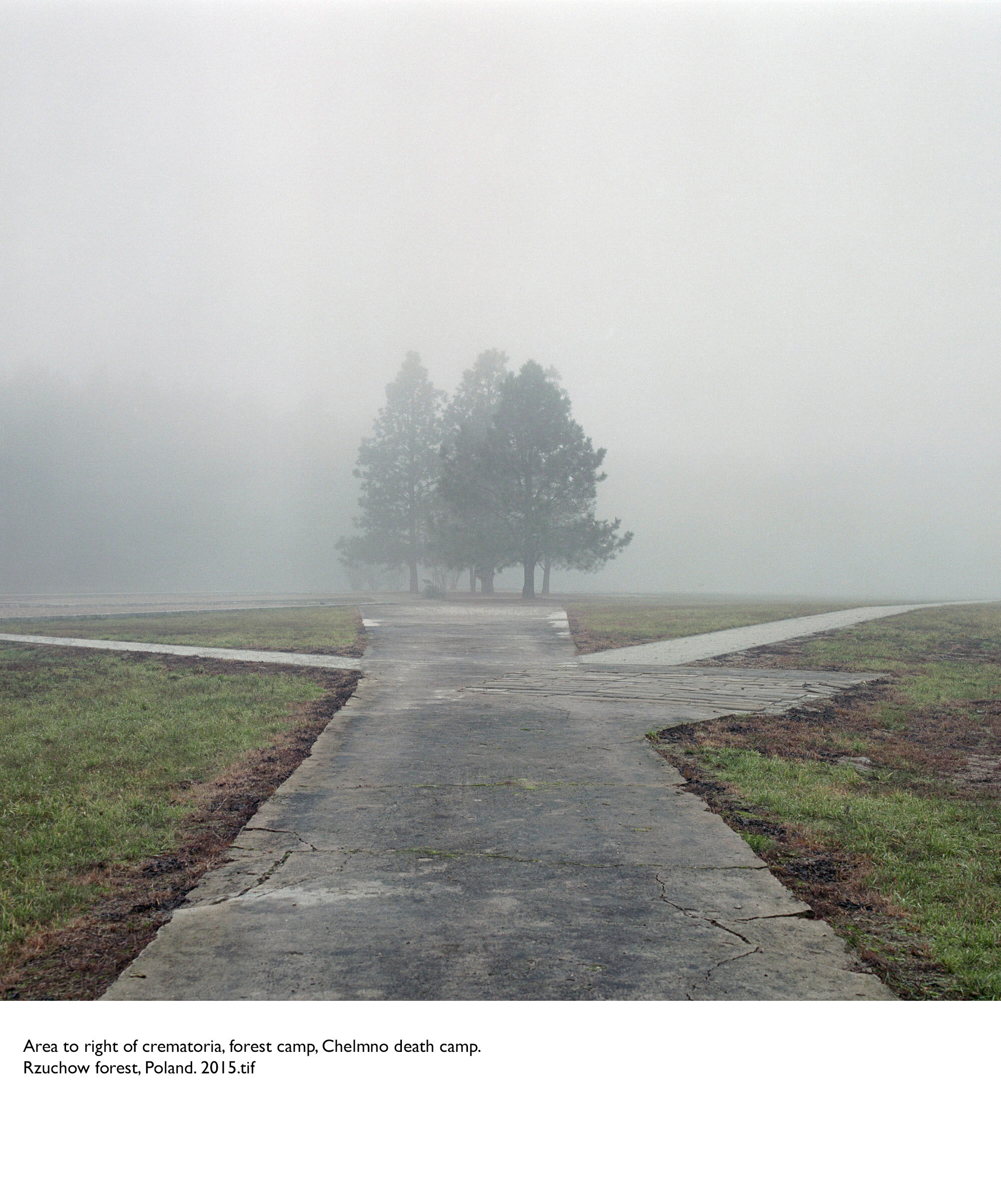 Area to right of crematoria, forest camp, Chelmno death camp.Rzuchow forest, Poland. 2015.tif