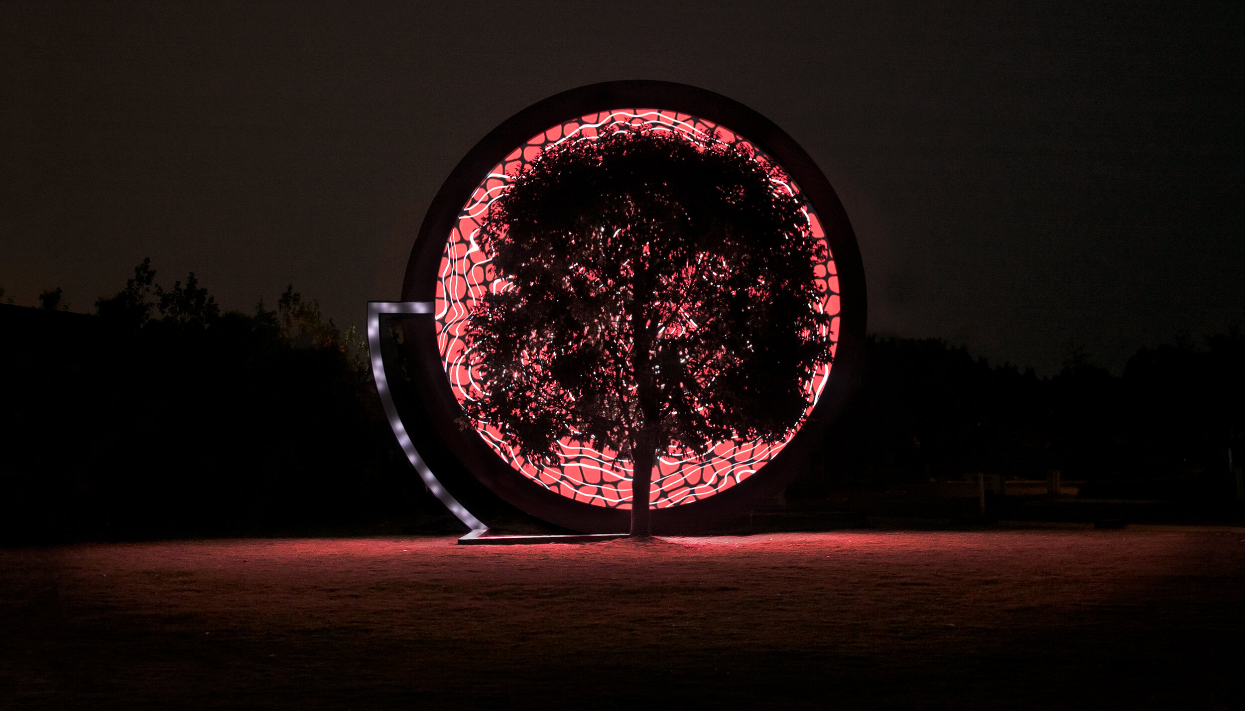 - The tree rings, created every second instead of every year, presented the trees well being in real time.Giving a voice to nature in times of climate change.