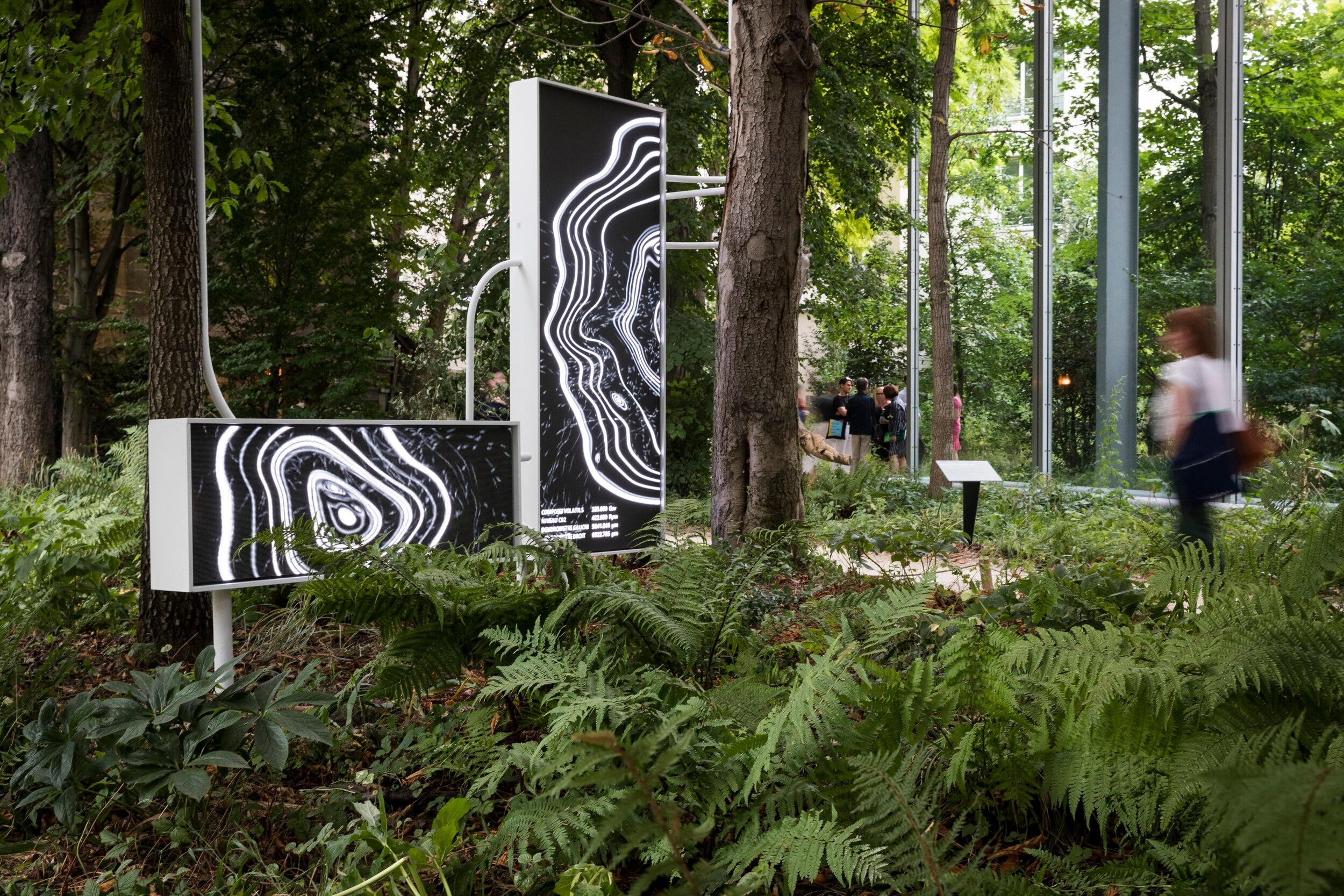 symbiosia_Cartier_thijs_biersteker_stefano_mancuso_Tree_art_Sensors
