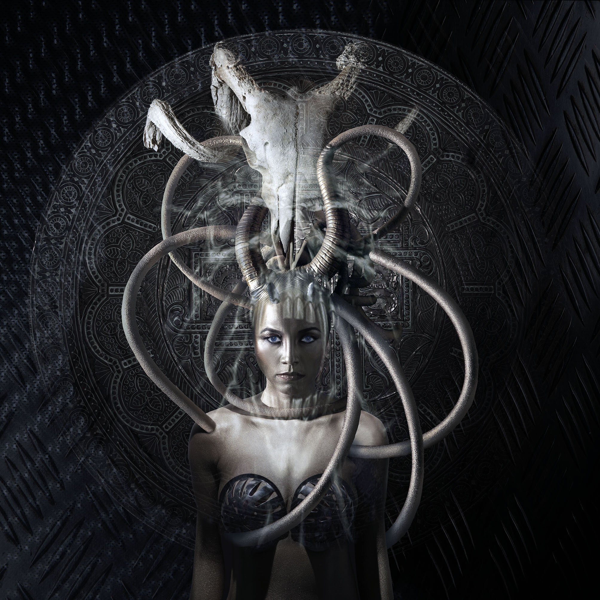 Medusa skull.jpg