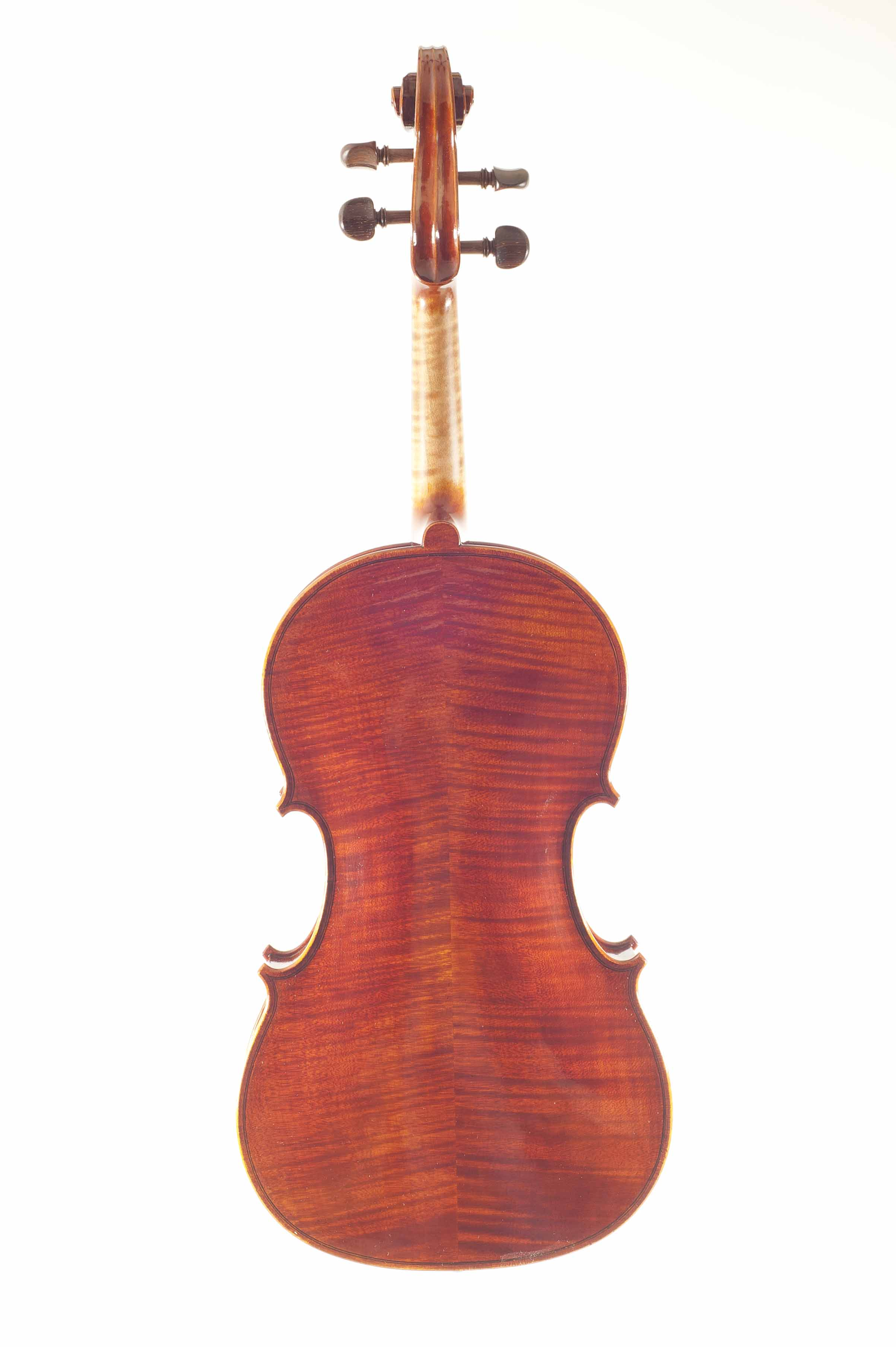 14 Viola Carlo Rota 16 Back.jpg