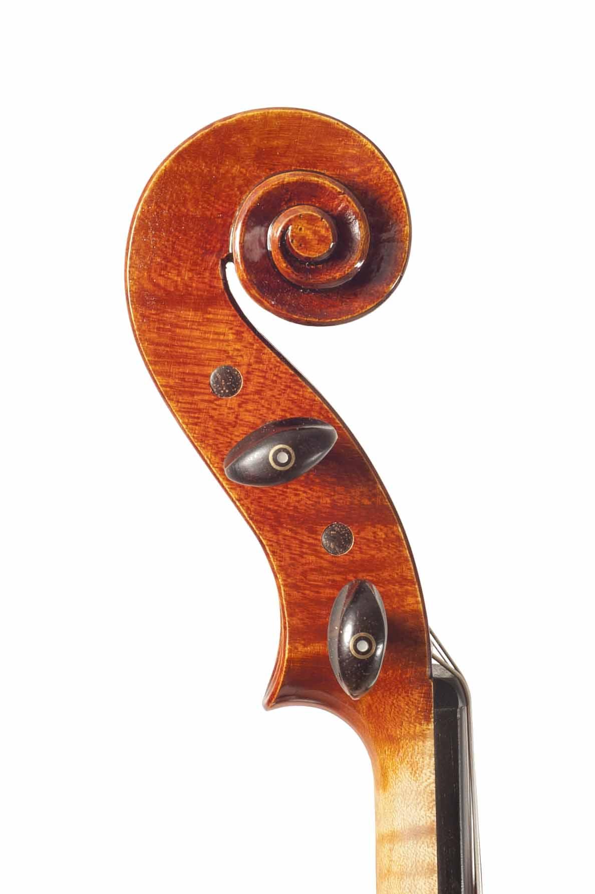 16 Viola Carlo Rota 16 Head.jpg