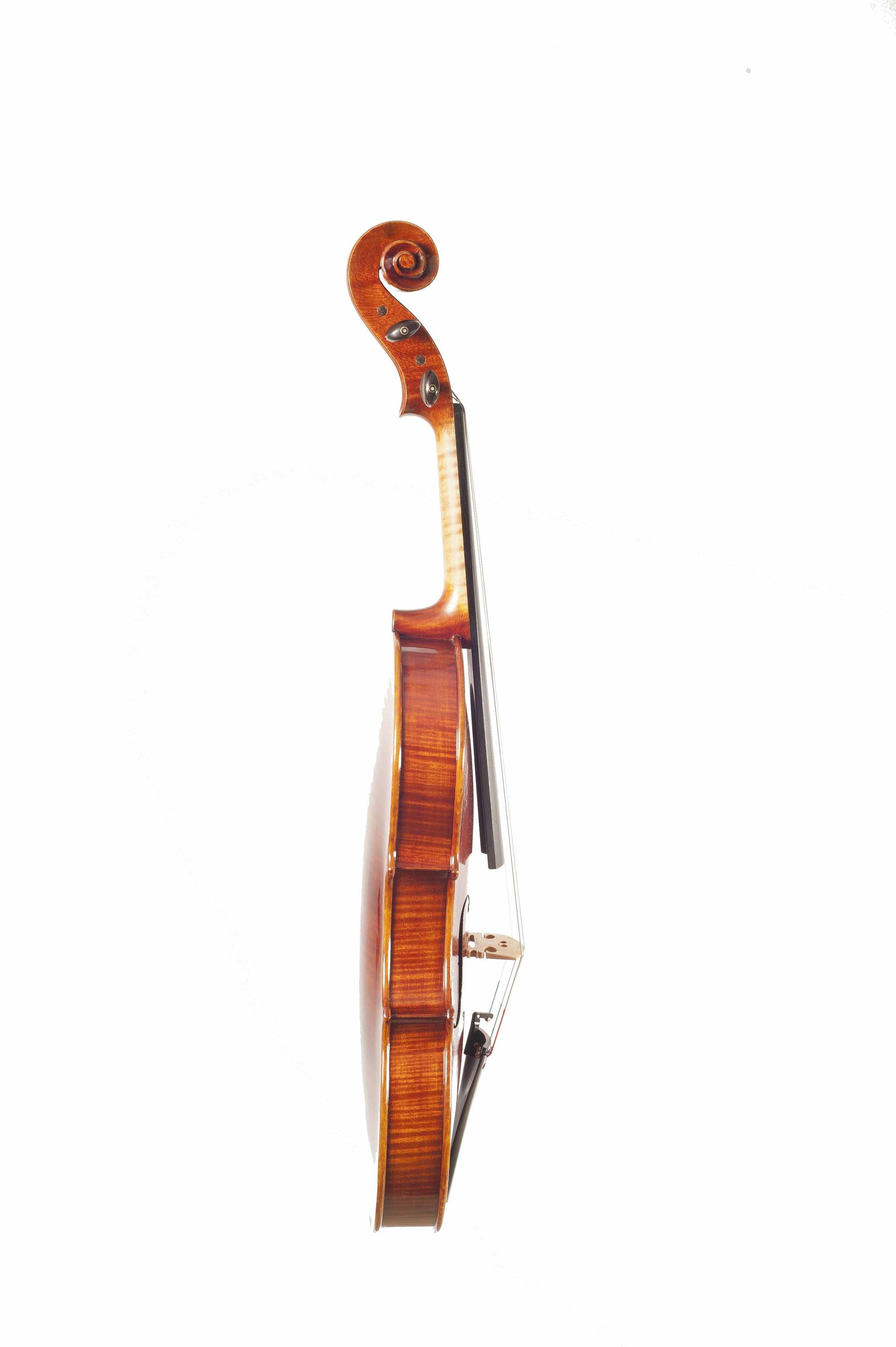 15 Viola Carlo Rota 16 Side.jpg