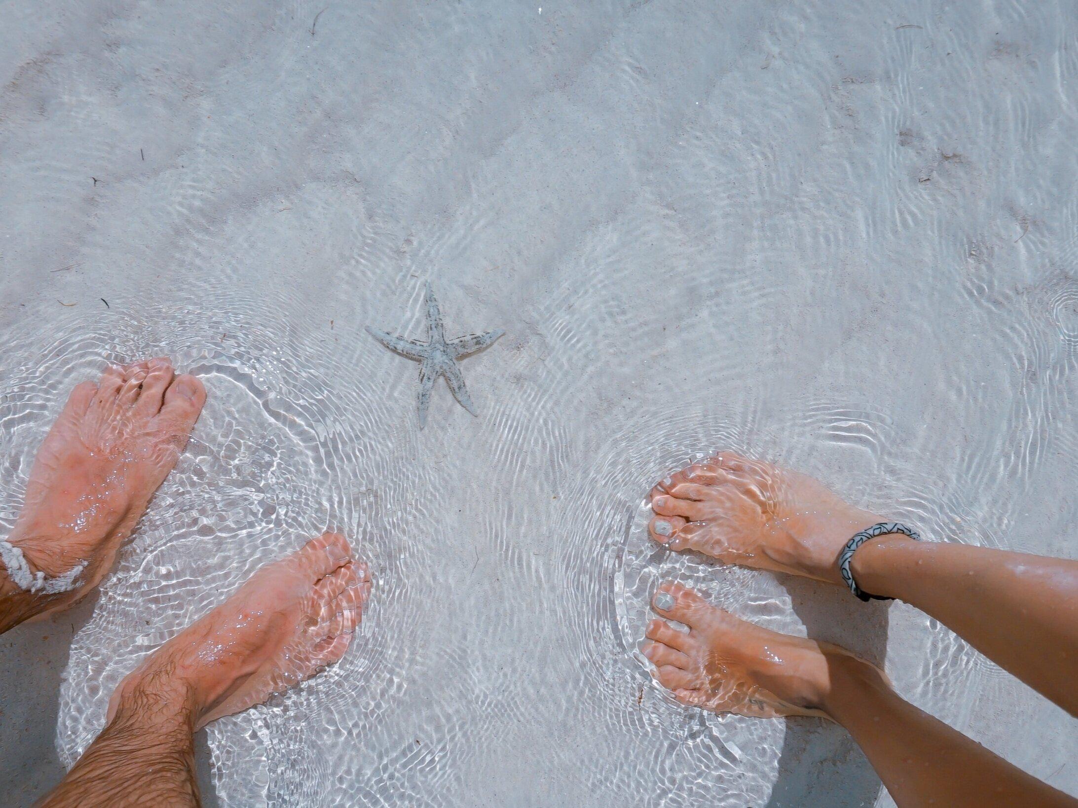 Ionic Cleanse Detox Footbath -