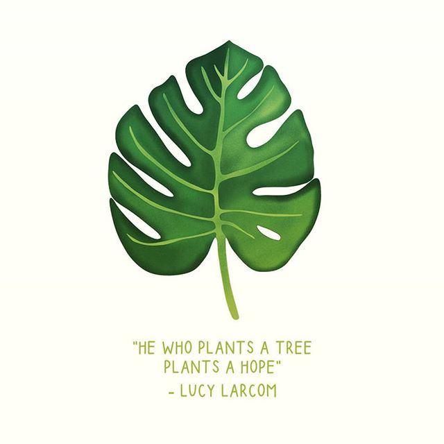 Be the hope and inspiration of the next generation!  Help plant the Ahimsa Peace Forest in Kenton, London on 16/11/2019 (link in bio)  #climatechange #bethechange #plantingforpeace #planttrees #globalwarming #peace #environment #change #responsibility #sustainability #treevolution #reforestation #kenton #stanmore #edgware #london