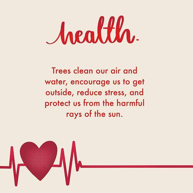 The benefits of tree planting! Reason 3... Plantingforpeace.org (link in bio)  #climatechange #bethechange #plantingforpeace #planttrees #globalwarming #peace #environment #change #responsibility #sustainability #treevolution #reforestation #kenton #stanmore #edgware #london