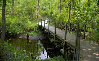 Take a 1.6 mile walk on Marshall's Riverwalk with scenic overlooks and places for a picnic along the Kalamazoo River.