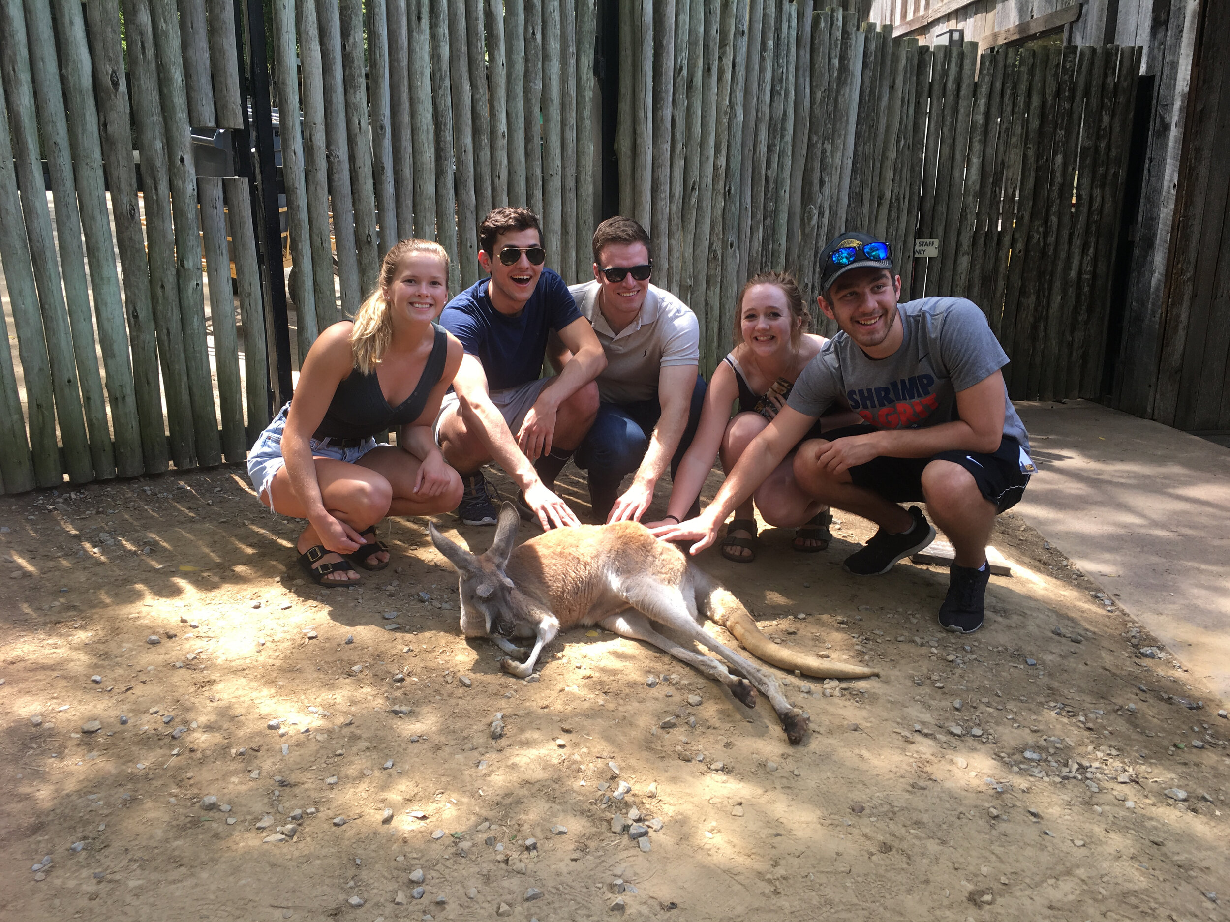SyBBURE visits the zoo!