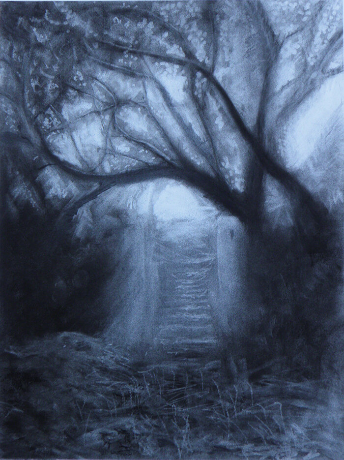 Into the Light, Charcoal on Paper,  - Artist - Anna Vyce