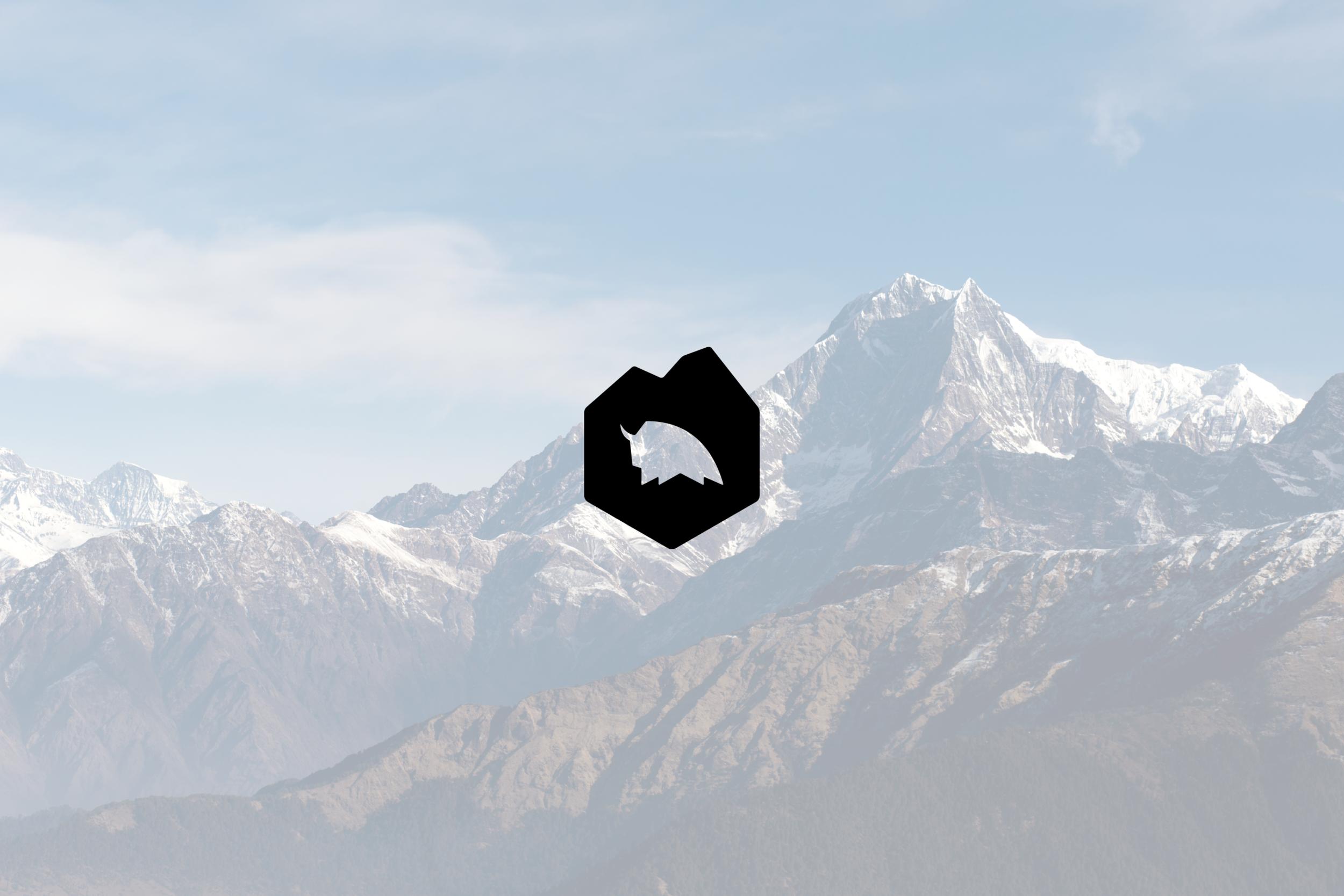 Logo design for Studio Dzo, design & branding studio in Austin, Texas.