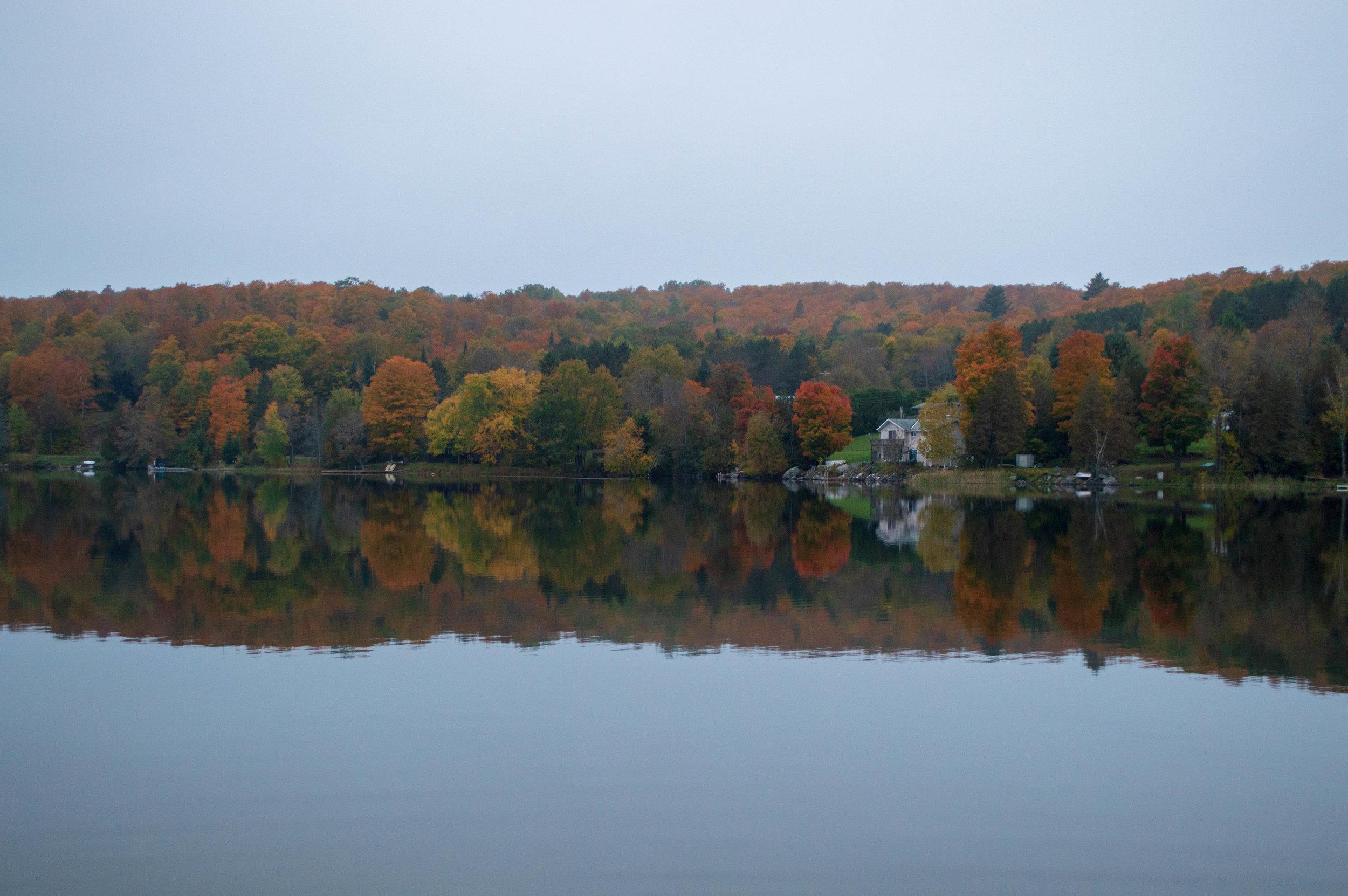 Pine-Lake.jpg