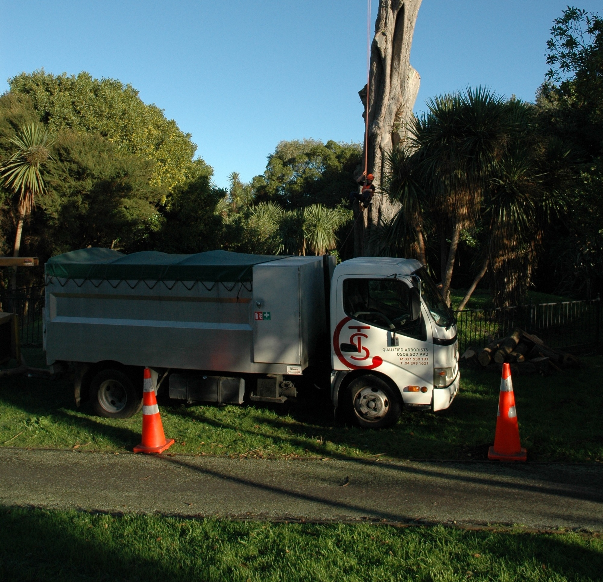 Tree Reports. - Our experienced arborists at Coastal Tree Services Wellington Ltd are able to give full detailed tree reports for insurance, protected, or heritage protected trees, or tree hazard evaluation reports.