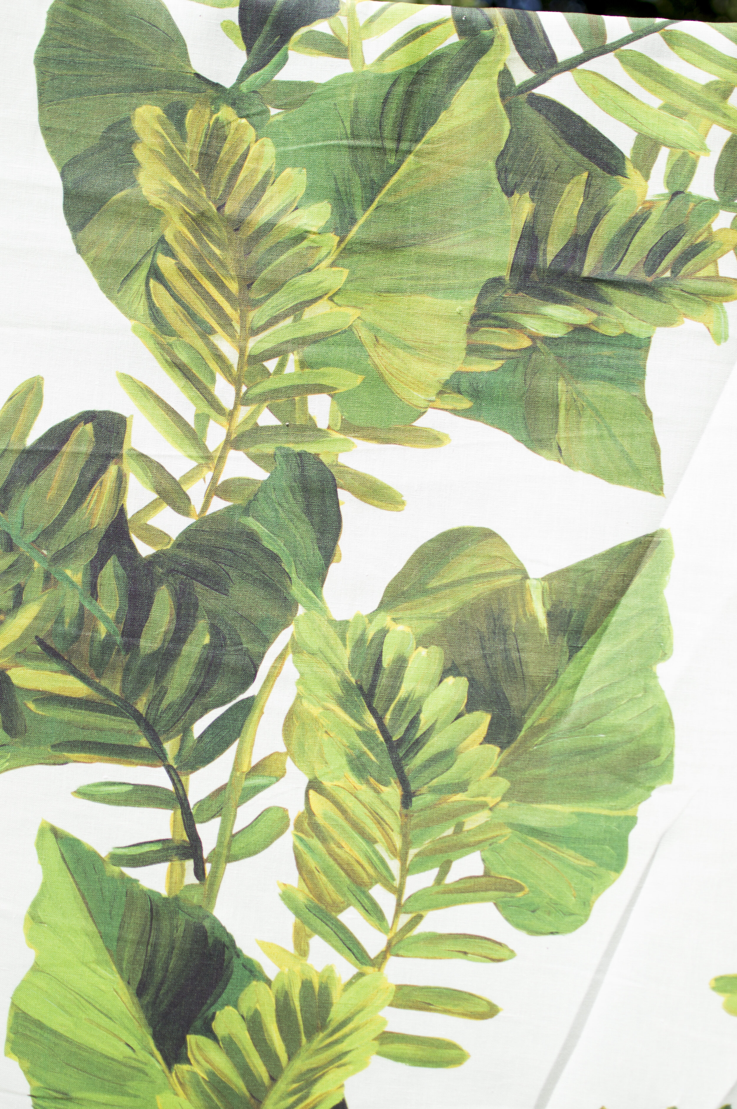 Foliage | JUNGLE  Two tropical leaves, carefully layered to add depth and create rich shades of green. This lush print captures the essence of a perfectly warm and sultry summer.