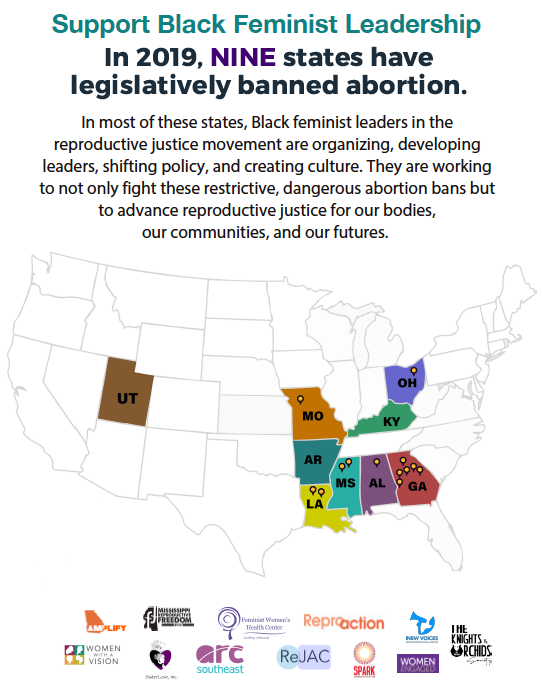 BFF- Abortion Ban Map only.png