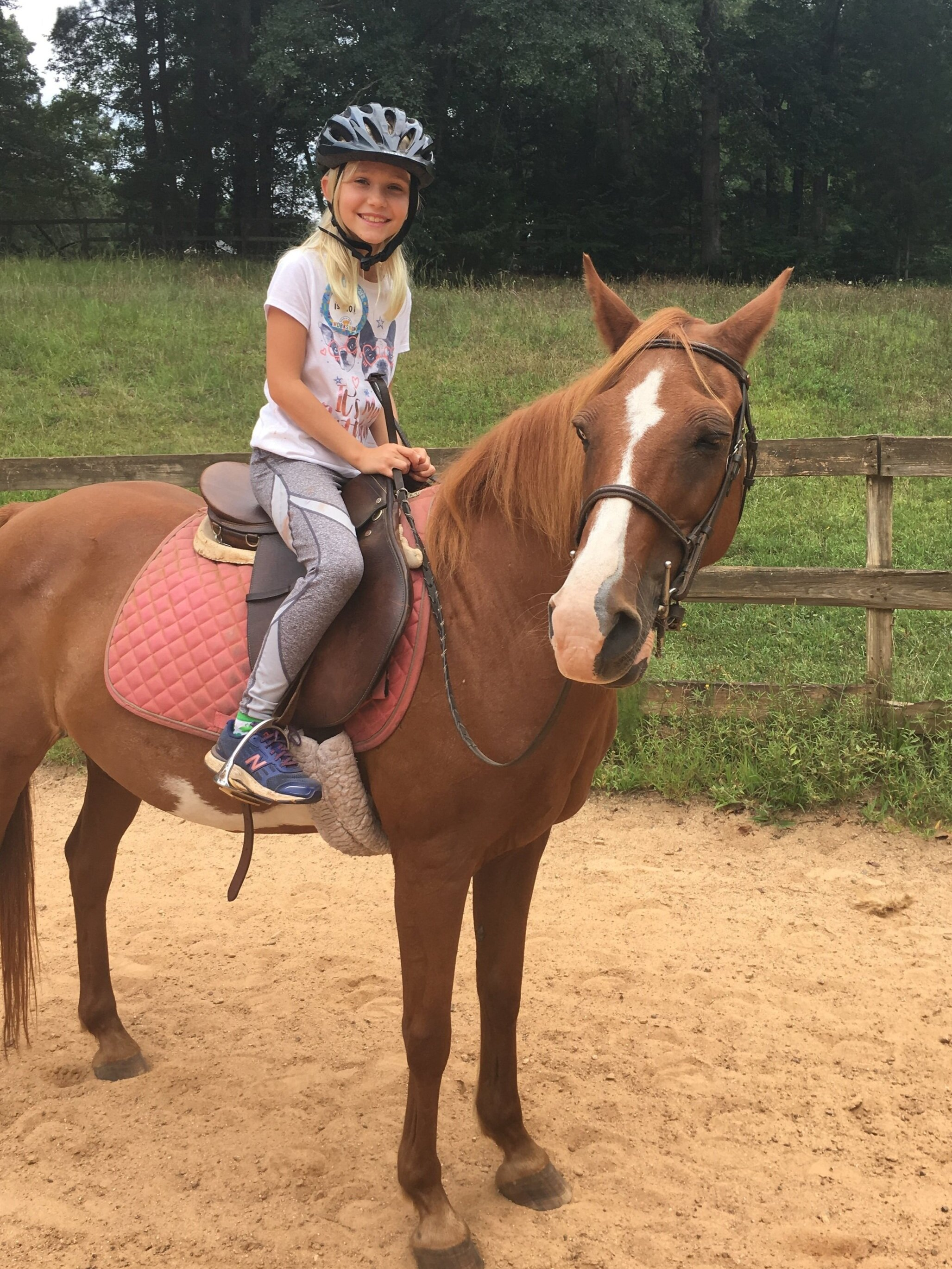 LESSONS - Grove Station Farms offers hunt seat riding instruction for beginners to advanced students.