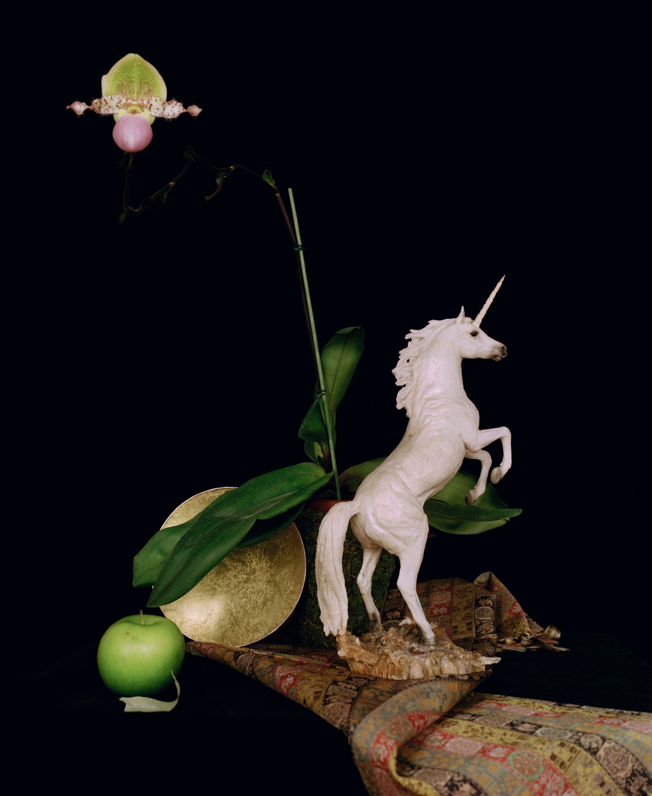 Still life with a unicorn.jpg