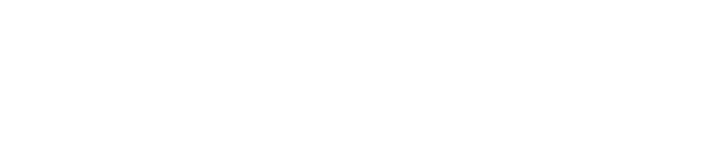 TI logo 2016 white.png