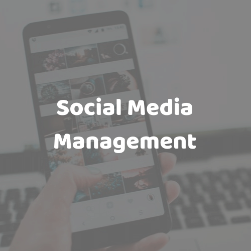Social Media Management - Revitalise your social media today. Whether you're looking for organic only or full management including campaigns and advertising - we manage every aspect of your social media so you don't have too.