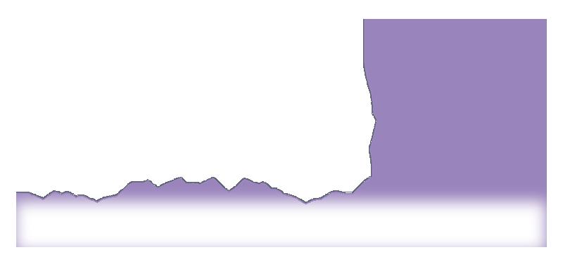 bella logo all white.png