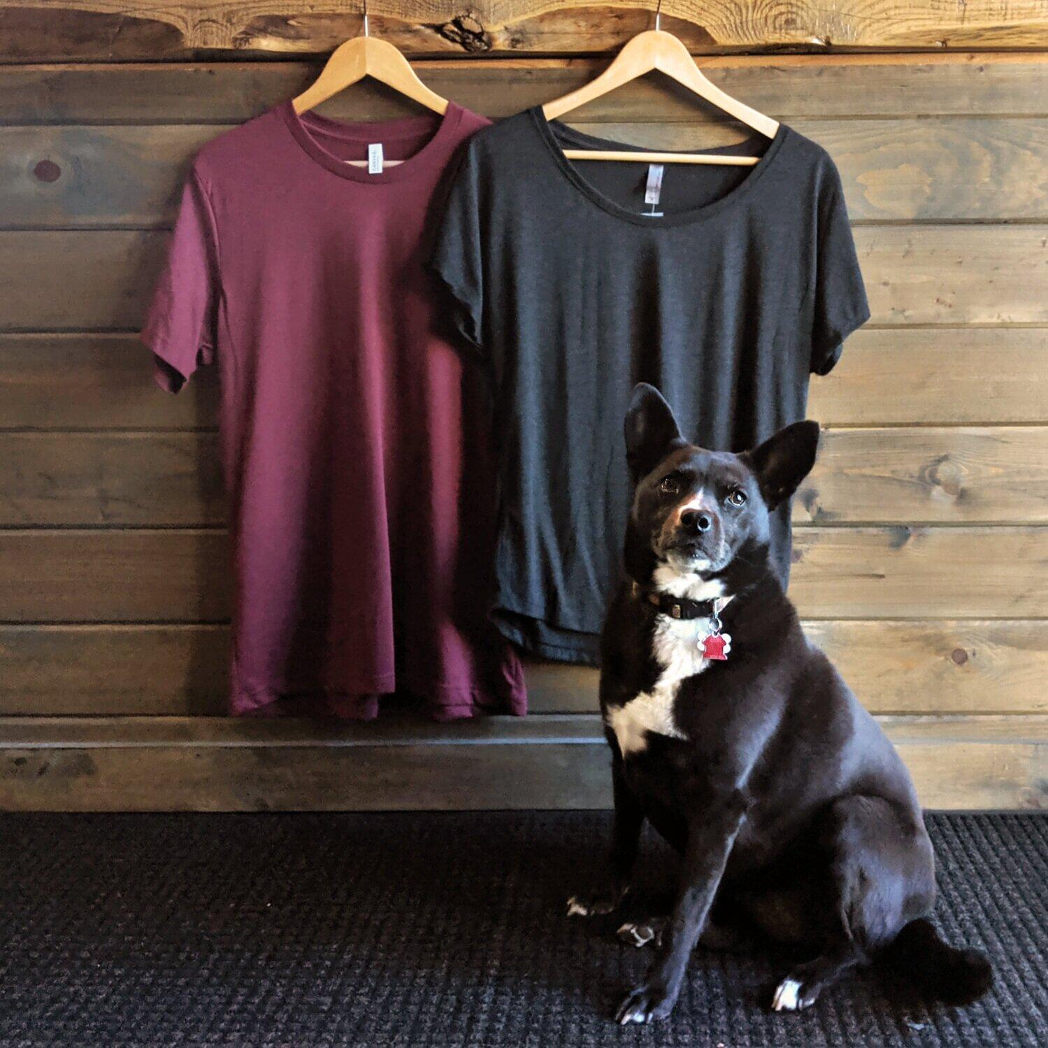Olly Dog: Owner Operator