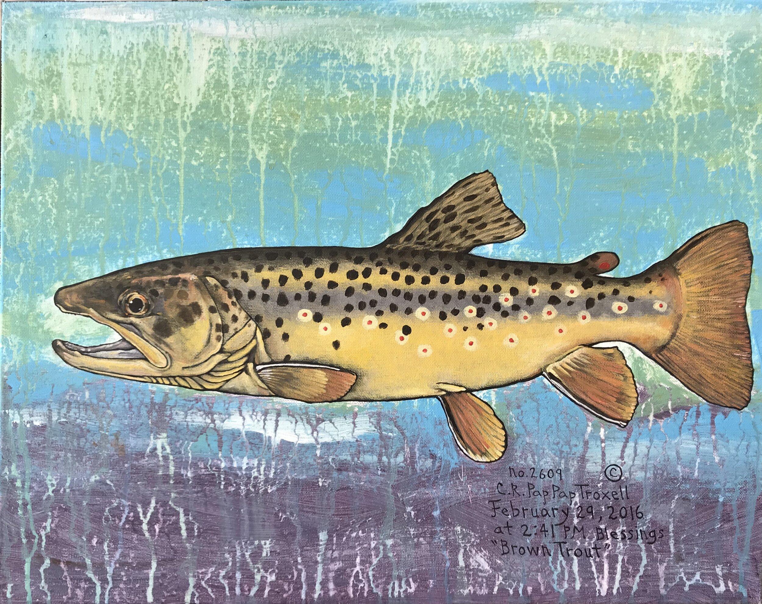 No. 2609 Brown Trout.jpg