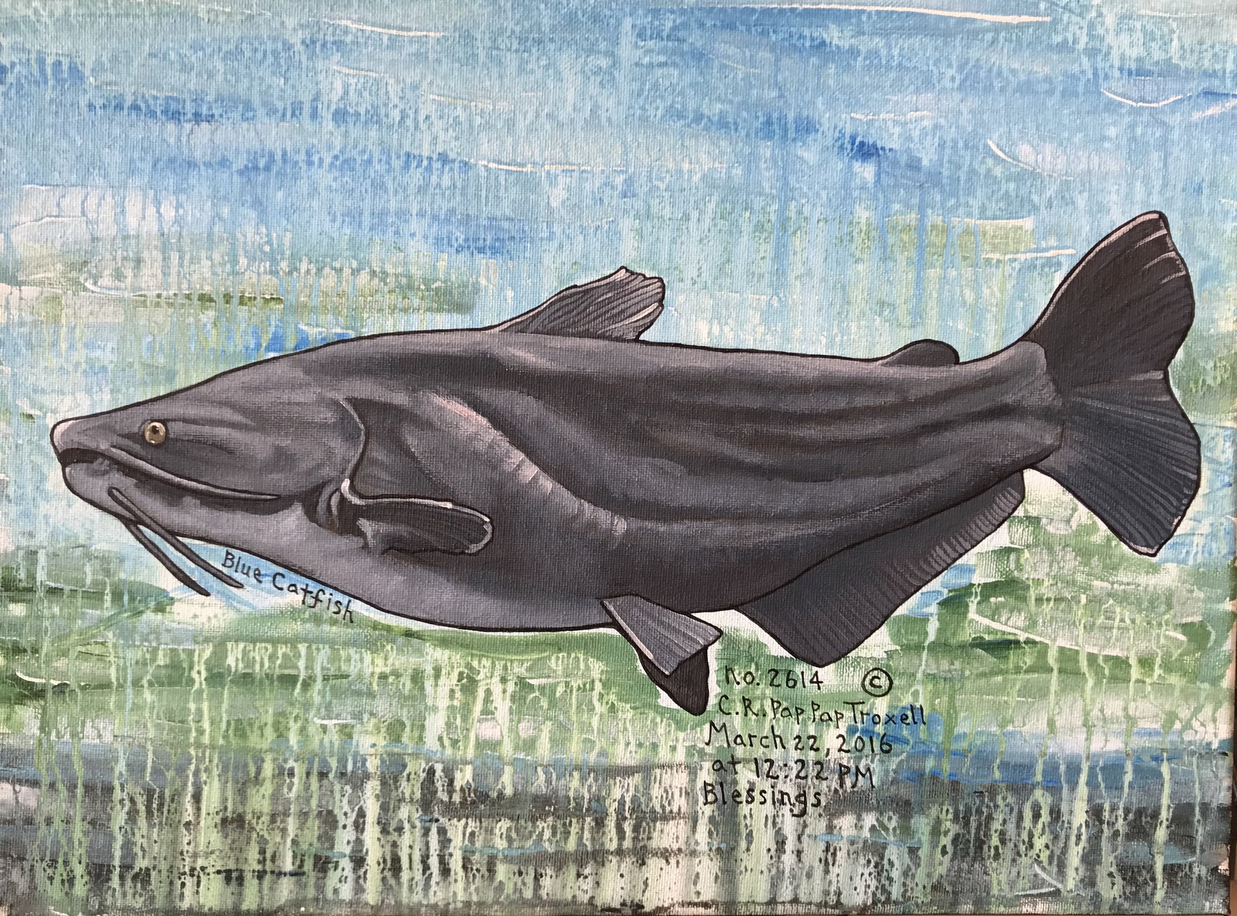 No. 2614 Blue Catfish.jpg