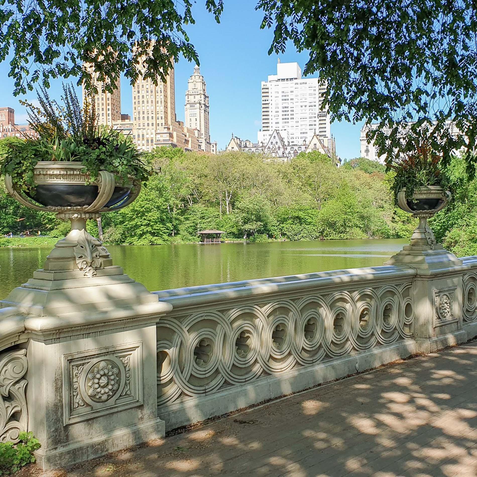 3.1-Central-Park-MAJA-5-2.jpg